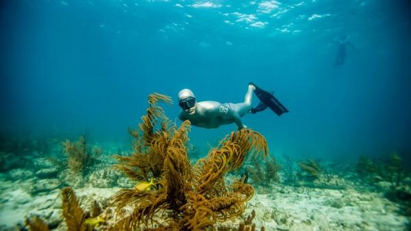 Buceo especialidad free diver